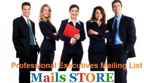 Professional-Executives-Mailing-List---Mails-STORE.jpg