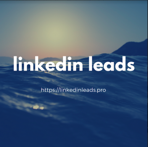 Linkedin-Leads-5.png