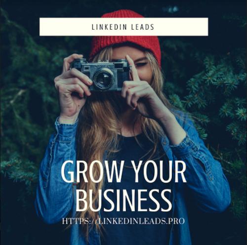 linkedin-Leads-8.png