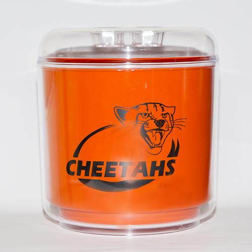 CHEETAHS-ICE-BUCKET.jpg