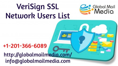 VeriSign-SSL-Network-Users-List.jpg