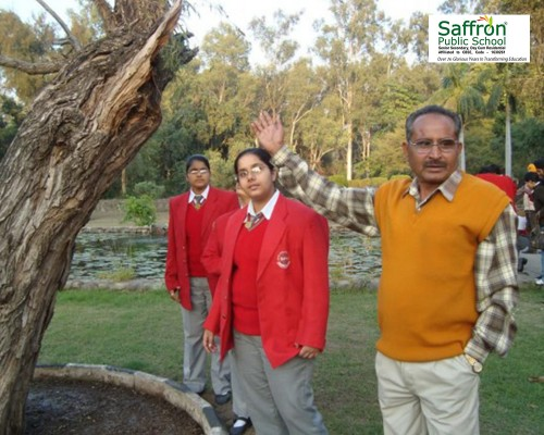 Best-Teachers-in-Punjab---Saffron-School.jpg
