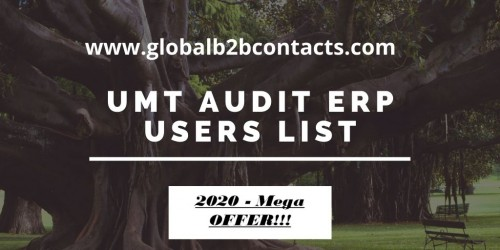 UMT-Audit-ERP-Users-List.jpg