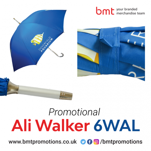 Promotional-Ali-Walker-6WAL.png