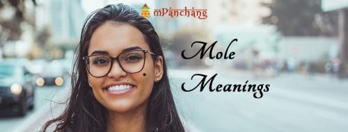 Mole-Meanings.jpg