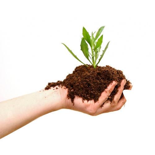 bio-organic-agro-fertilizer-500x500.jpg