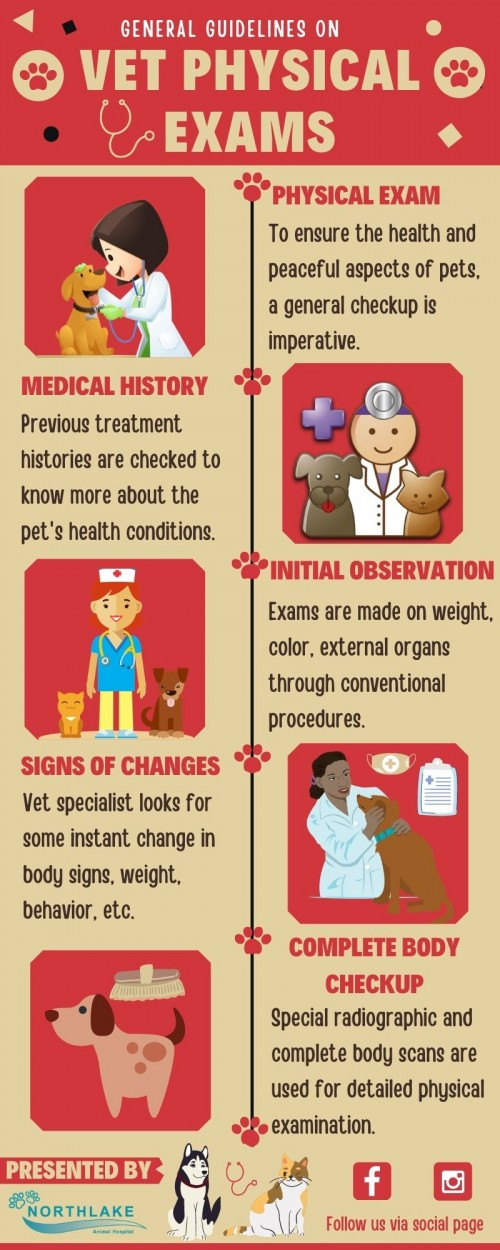 Importance-of-Pet-Wellness-Exams.jpg