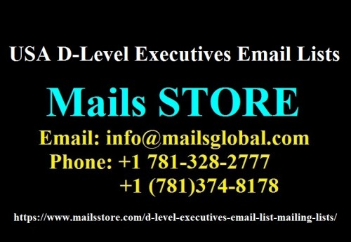 USA-D-Level-Executives-Email-Lists---Mails-STORE.jpg