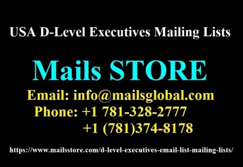 USA-D-Level-Executives-Mailing-Lists---Mails-STORE.jpg