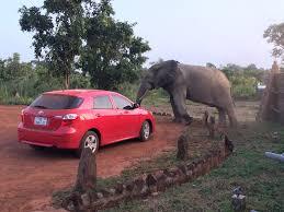Car-Rentals-in-Accra.jpg
