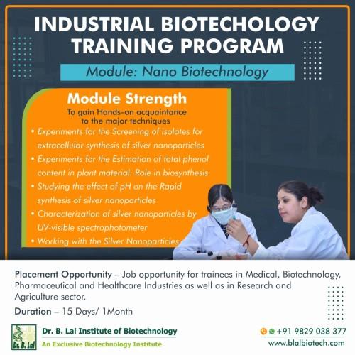 Nano-Biotechnology.jpg