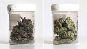 cannabis-retail-businessplan-Canada.jpg