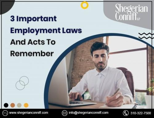 Employment-LAw-firms.jpg