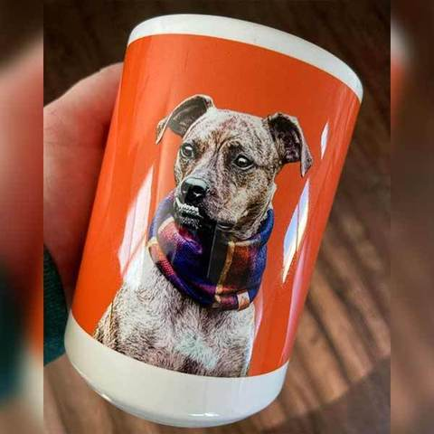 custom-pet-art-coffee-mugs-572589_1024x1024_0cd81cce-70da-4d4c-8941-b59fe2f846ce_480x480.jpg