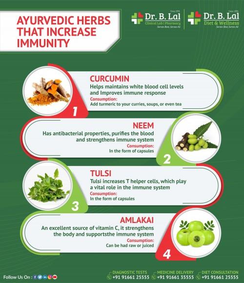 Ayurvedic-Herbs-that-increase-immunity.jpg